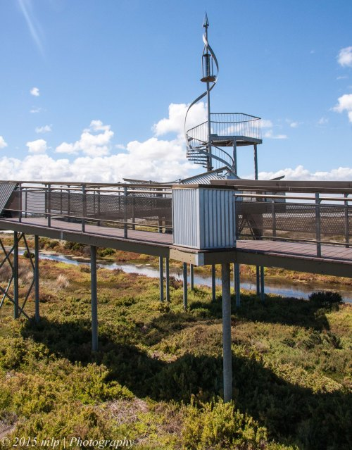 Cheetham Wetlands Observation Tower III