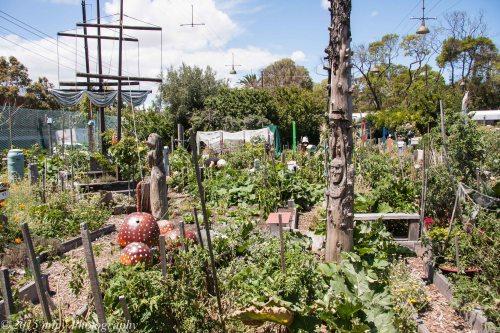 Veg Out Community Gardens III