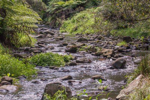 Tarra River