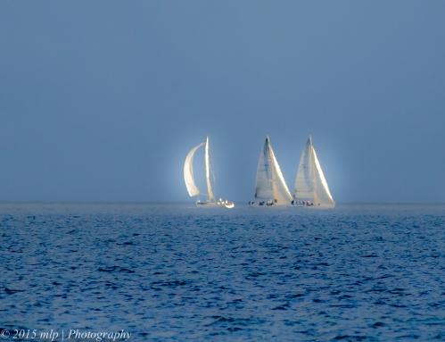 Yachts off Elwood Beach
