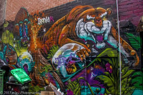 Croft Alley Chinatown, Melbourne CBD, 27 April 2015