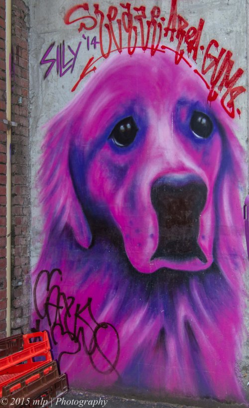 Graffiti dog, Melbourne CBD, 27 April 2015