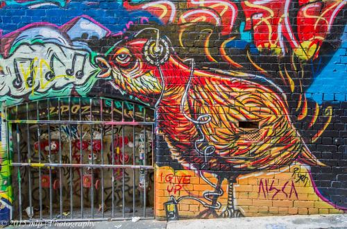 Bird, Hosier Lane,