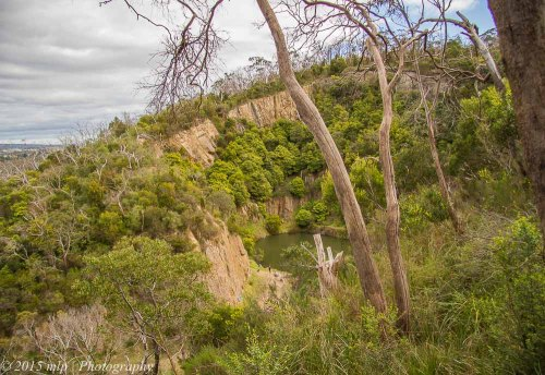 Top of the Quarry, Moorooduc Quarry Flora and Fauna Reserve