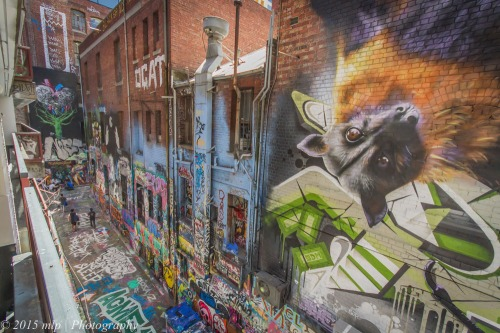 Hosier Lane Art, Melbourne CBD