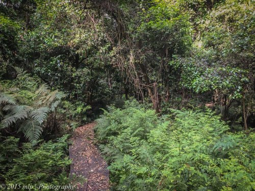 Double Creek Nature Reserve, Mallacoota