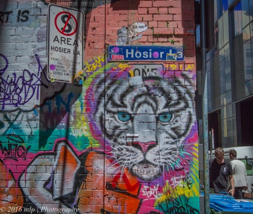 Hosier Lane Snow Leopard, Hosier Lane, Melbourne CBD