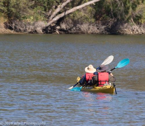 Kayakers, Glenelg River, Lower Glenelg National Park, Victoria