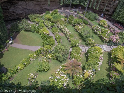 Umpherston Sinkhole Gardens, Mount Gambier, South Australia