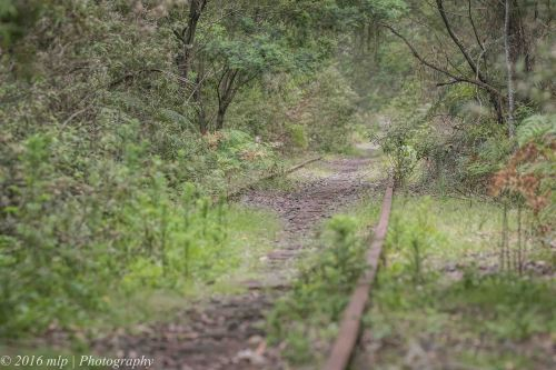 Old South Gippsland Rail-line, Adams Creek Reserve, Nyora, Victoria