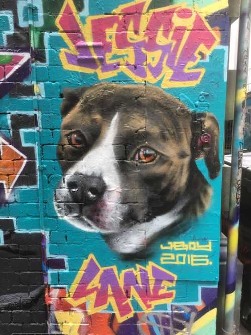 Melbourne Street Art Nov 2016