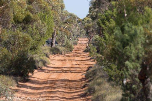 Konardin Track, Hattah Kulkyne National Park, Vic